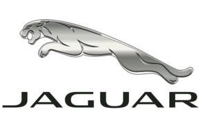 Ремонт Ягуар (Jaguar) в Павловском Посаде